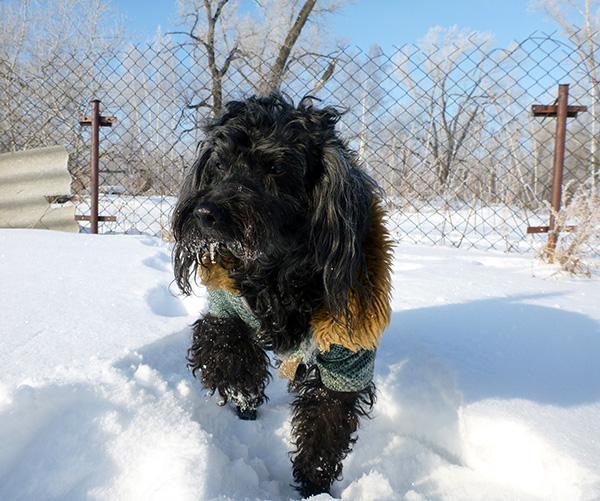 Бабай зимой